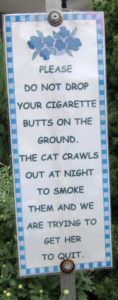 smoking cat bordje