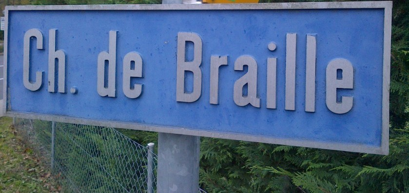 braillea