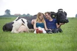 Boerderijrecreatie via vakantieveilingen.nl