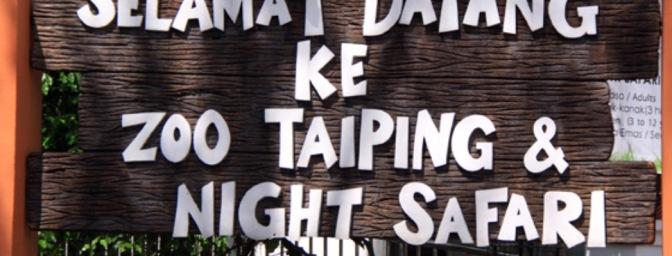 Nachtsafari Taidinges_header