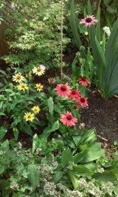 De allermooiste tuinenfoto van de hele special - Ilona