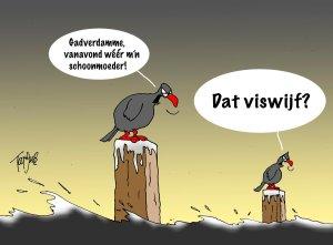 Tekening Toon van Driel Tekst: Toon van Driel & Bas van Vuren