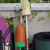 Buiten op een eikenstoel (240)